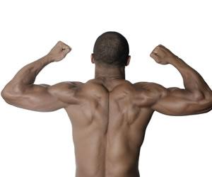 会っただけで女を興奮させる体格とは?肩幅と腕の筋肉萌えを狙え